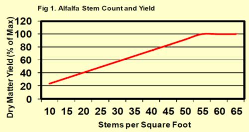 alfalfa graph